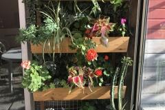 4 jardinières à réserve d'eau en douglas